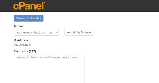 SSL on cPanel