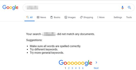 No Results on Google