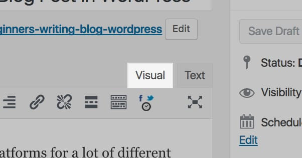 Visual Editor Tab