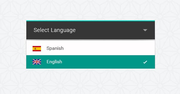 Bilingual Website Language Selection