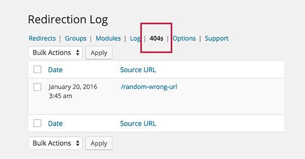 Capture 404 Logs