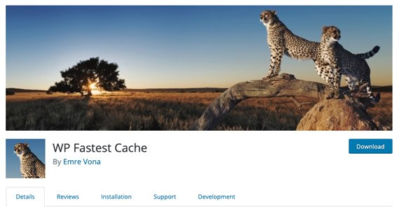 WP Fastest Cache Page